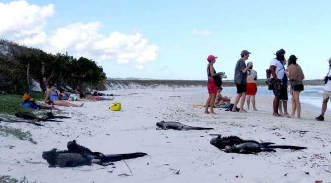 Nuevos requisitos para turistas que ingresen a Galápagos