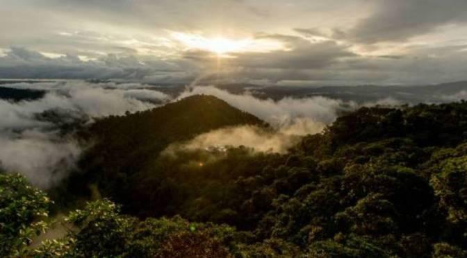 El Chocó Andino declarado Reserva de la Biósfera