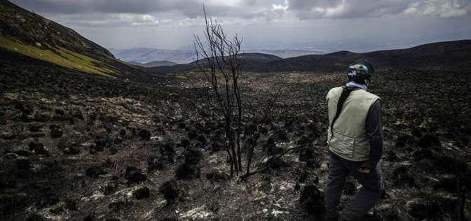 1.146 hectáreas de páramo se quemaron en el cerro Atacazo