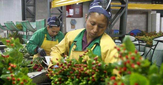 Emprendedores pueden inscribirse en el Reto Exporta al Mundo