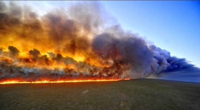 #PrayForAmazonas contra el incendio de la Amazonía