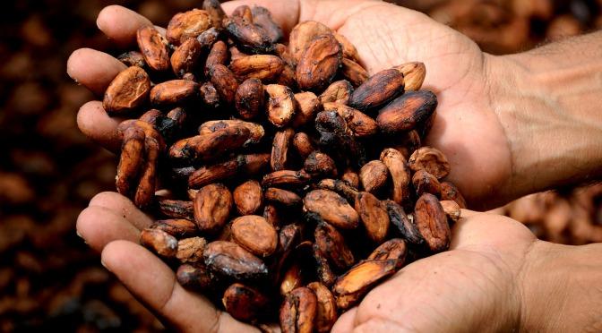 13 de septiembre: Una fecha para relatar la historia del chocolate
